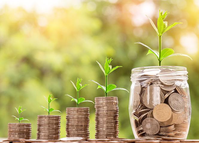 Cara Memilih Investasi Agribisnis Pertamamu